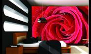 重庆软装设计找刘侨:《科技为软装赋能,8D壁画打造更真实的立体空间》